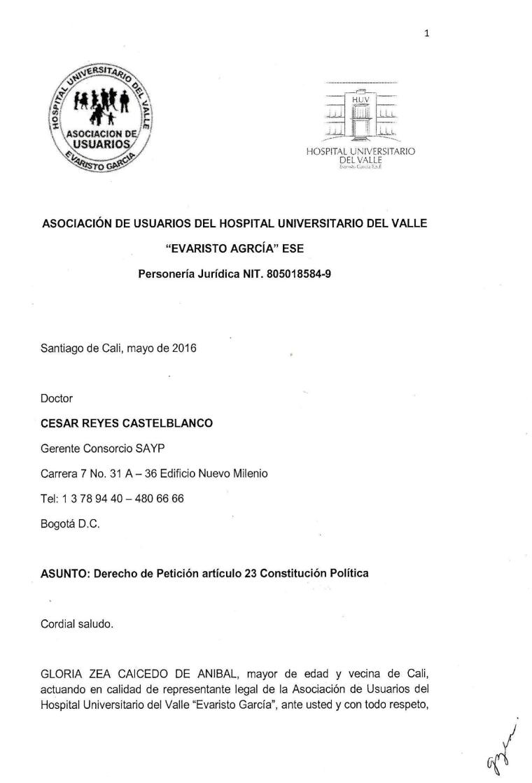 Consorcio SAYP1.png
